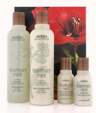 Aveda Rosemary mint invigorating hair and body care kit
