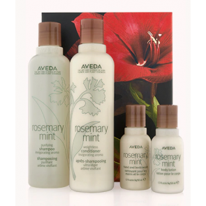 Aveda Rosemary mint invigorating hair and body care kit